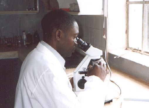 Malaria test in the Clinic Laboratory